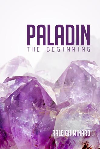 Paladin: The Beginning